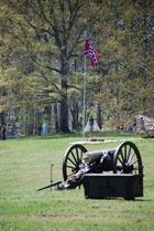 Cannon and Flag